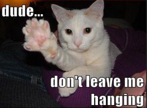dont leave me hanging meme cat